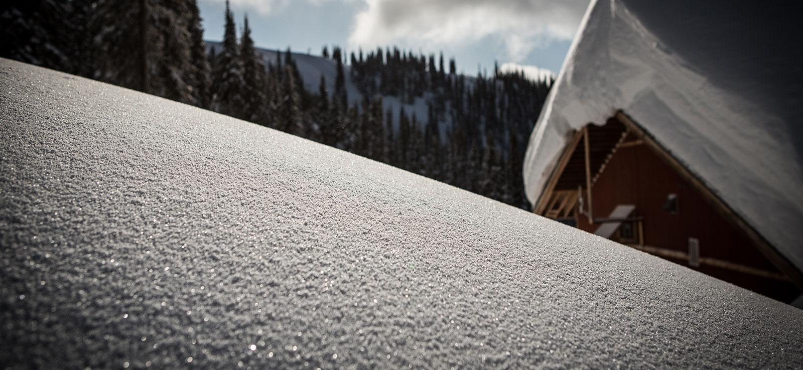 Snöfisk powder snowboarding